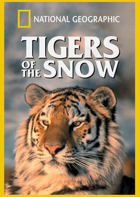 Is National Geographic Tigers Of The Snow Available To Watch On