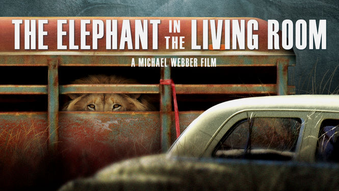 Is 39 the elephant in the living room 39 available to watch on netflix in america newonnetflixusa for The elephant in the living room watch online
