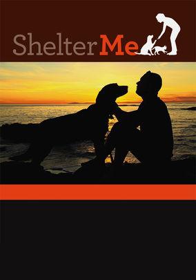 Shelter Me on Netflix UK