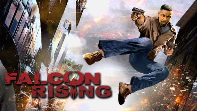 Falcon Rising on Netflix AUS/NZ