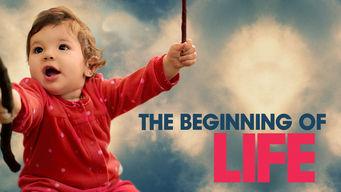 O Começo da Vida